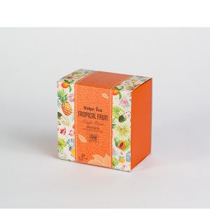 Tropical Fruit Luxury Enveloped Pyramid Tea Bags